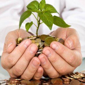 Заощаджуйте гроші та час з котлами BIODOM